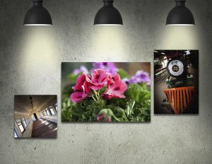 mounted canvas prints